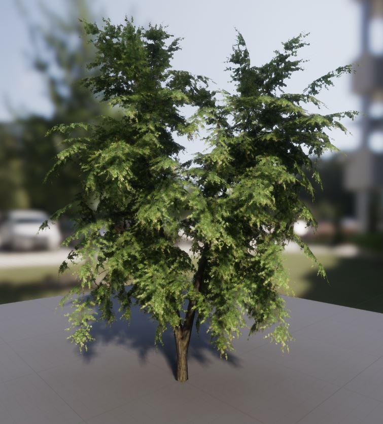 Klicke auf die Grafik für eine größere Ansicht  Name:tree.JPG Hits:135 Größe:107,8 KB ID:7019